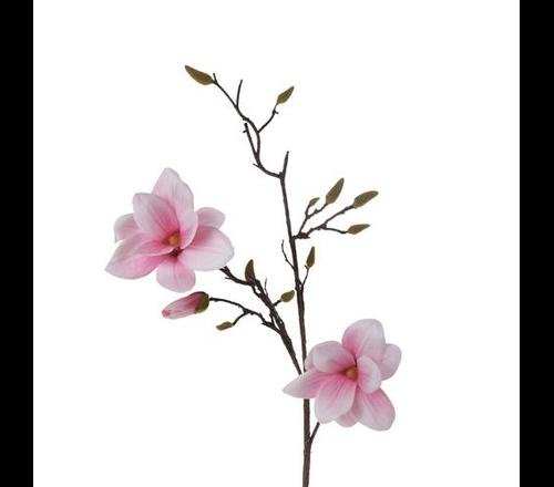 Najnowsze kwiatowe trendy dekoracyjne na lato 2020