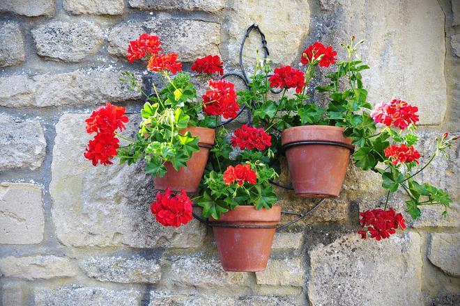 Sztuczne kwiaty doniczkowe do każdego wnętrza, na balkon i na taras