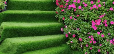 zielone dekoracje