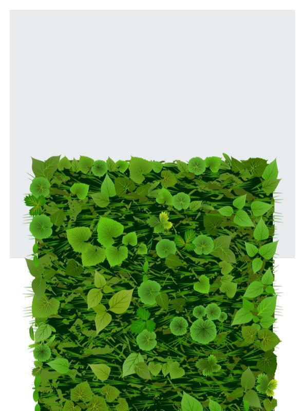 Zielone ściany i dekoracje