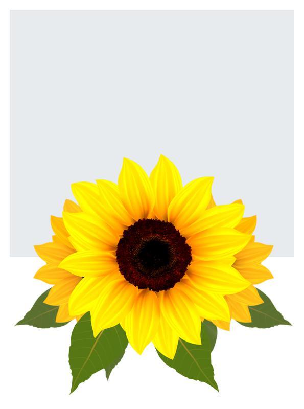 Główki kwiatowe