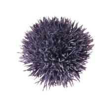 Czosnek-główka (W003)