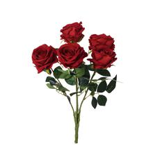 Róża- bukiet welwetowy (U042)