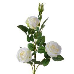 Róża - gałązka (GK029)