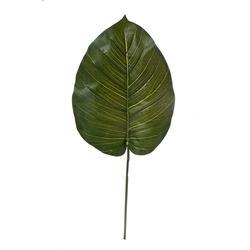 Pothos - liść (DK103)