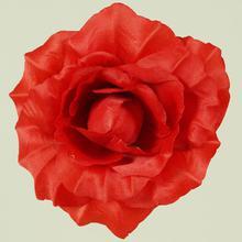 Róża rozwinięta - główka (W685)