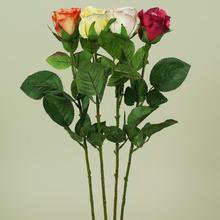 Róża w pąku - gałązka (K145)