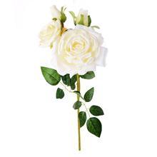 Róża-gałązka (GK161)
