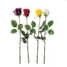 Róża-gałązka (K742)