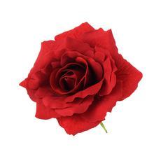 Róża rozwinięta - główka welwet (W071)