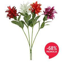 Kwiat egzotyczny - gałązka (GK367)