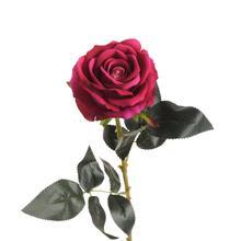 Róża - gałązka welwet (K712)