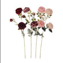 Róża - gałązka (GK212)