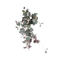 Piggyback x 105 liści bluszcz 80cm (B168)