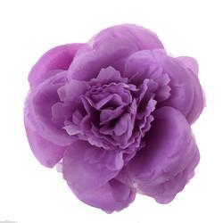 Róża peoniowa - główka (W246)