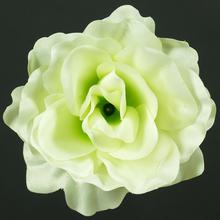 Róża - główka (W689)