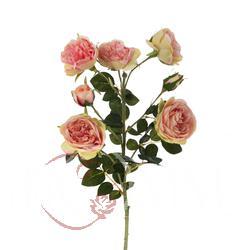 Róża - gałązka x 7 (GK213)