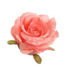 Róża rozwinieta - główka (W072)