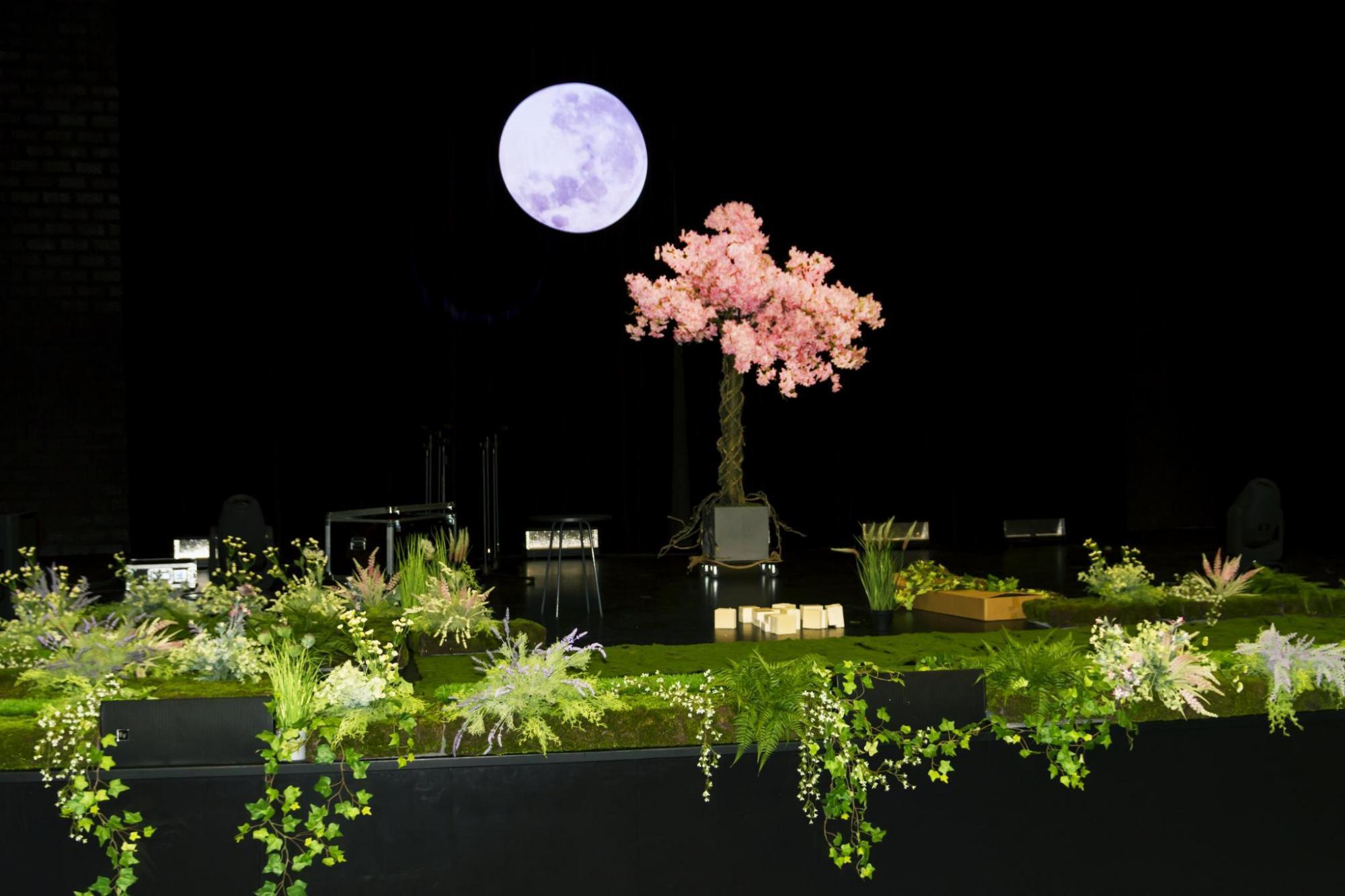 Anita Lipnicka - scenografia trasy koncertowej